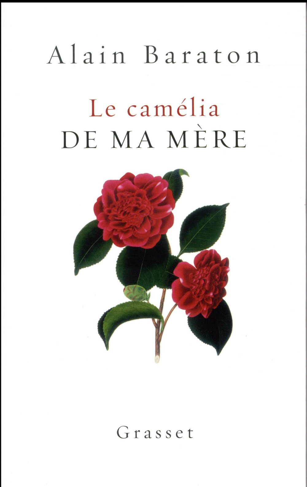 LE CAMELIA DE MA MERE