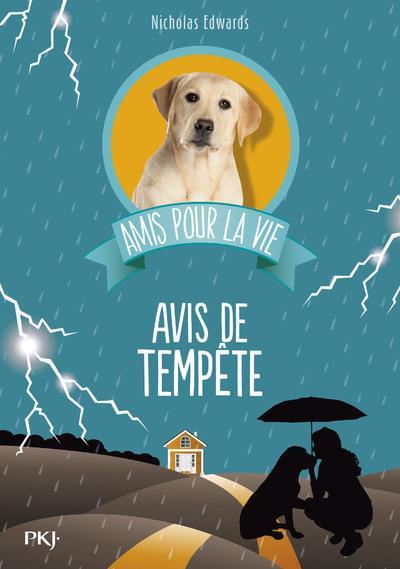 AMIS POUR LA VIE - TOME 2 AVIS DE TEMPETE